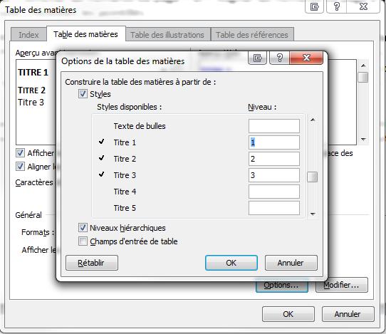 Capture d'écran Word des options de la table des matières